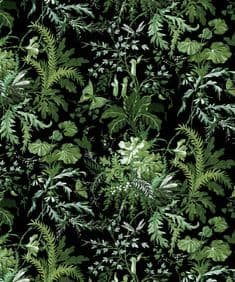 Arcadian Woods - green wallpaper