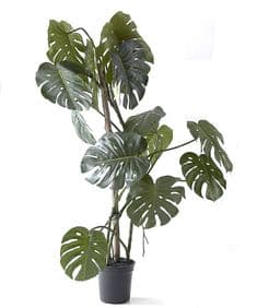 Giant faux Monstera plant
