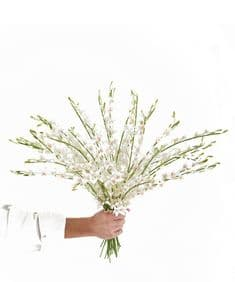 Miniature white orchids hand-tied bouquet
