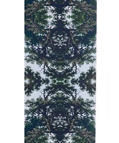 Trees Two Multi Graphic wallpaper