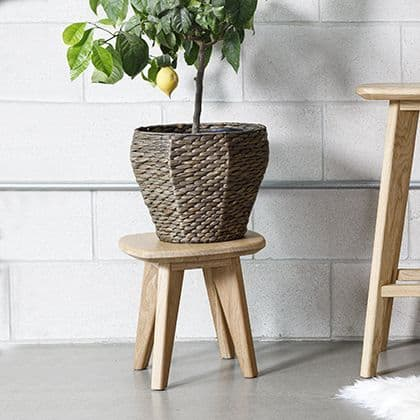 Salters Oak Plant Stand