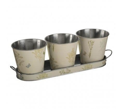 Set of Plant Pots & Tray | Home Accessories