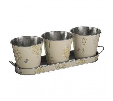 Set of Plant Pots & Tray