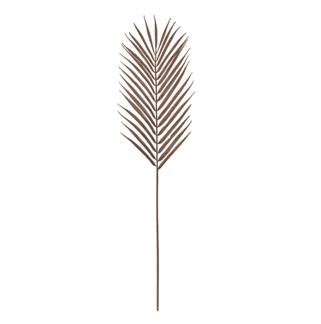Tall Palm Stem - Brown | Home Accessories