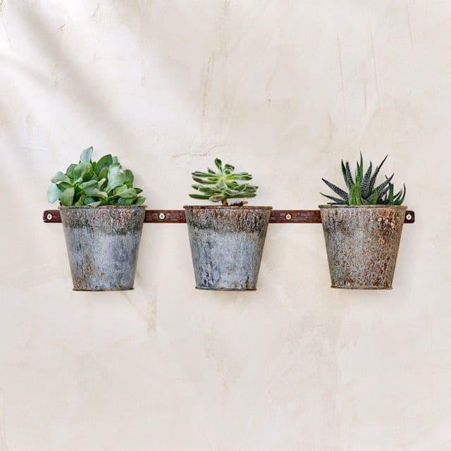 Triple Wall Hung Planter